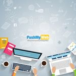 Pushmyweb Instagram